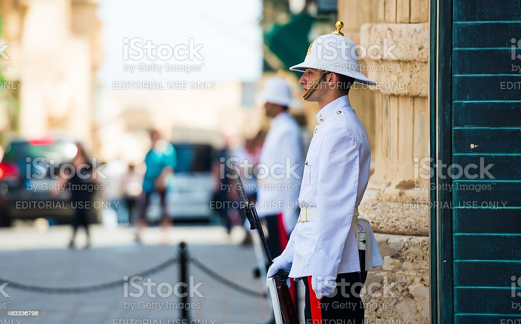 maltese guardian in a street stock photo