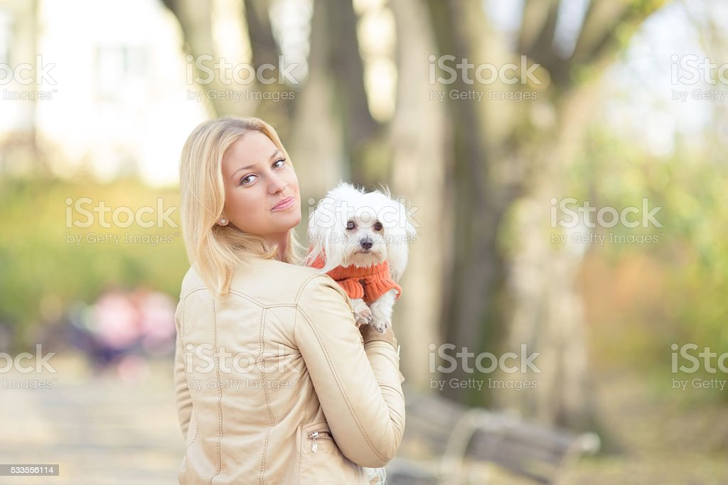 Maltese Puppy and Her Owner stock photo