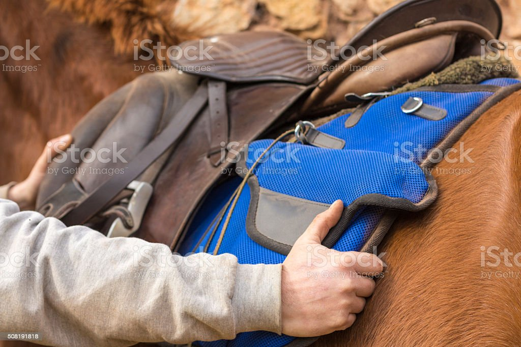 Man adjusting the saddle on his horse stock photo