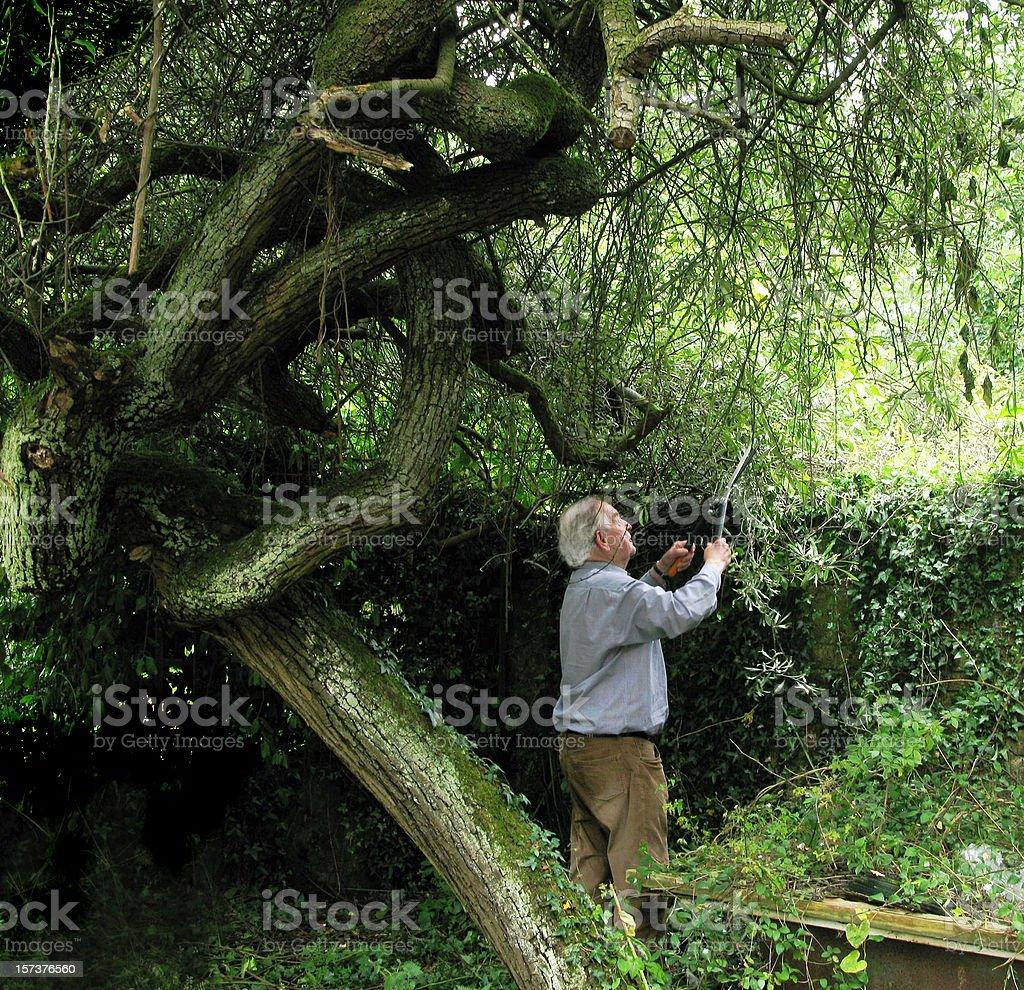 Man Against Nature. stock photo