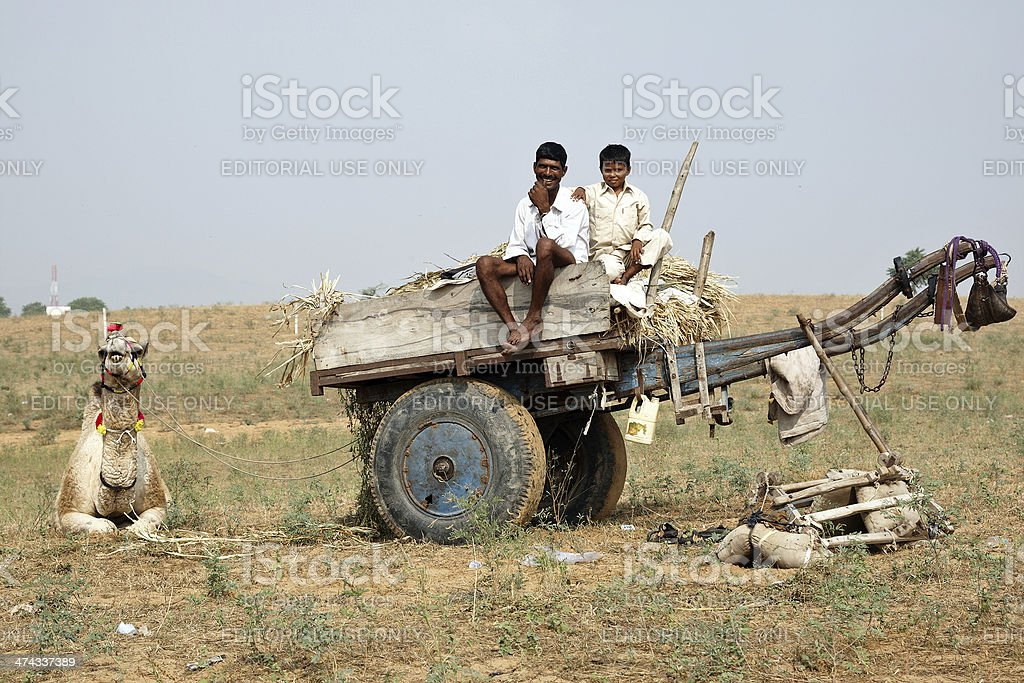 Man and boy on camel cart  at Pushkar Fair royalty-free stock photo