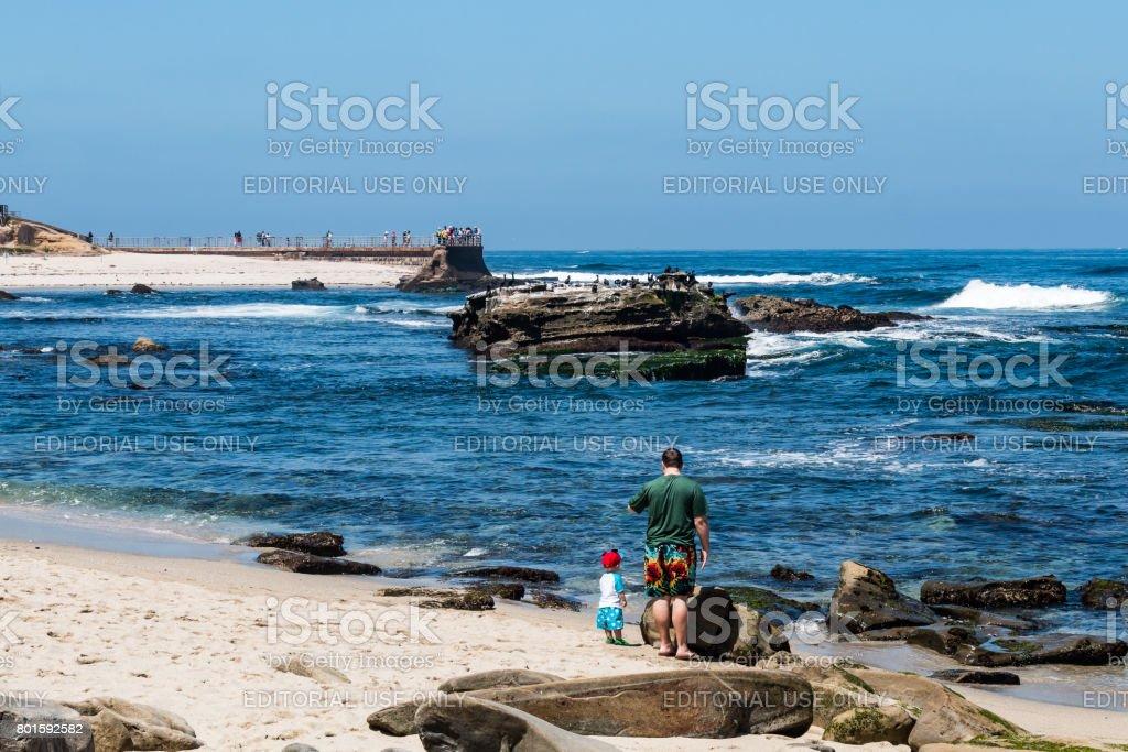Man and Child on Beach Near La Jolla Children's Pool stock photo