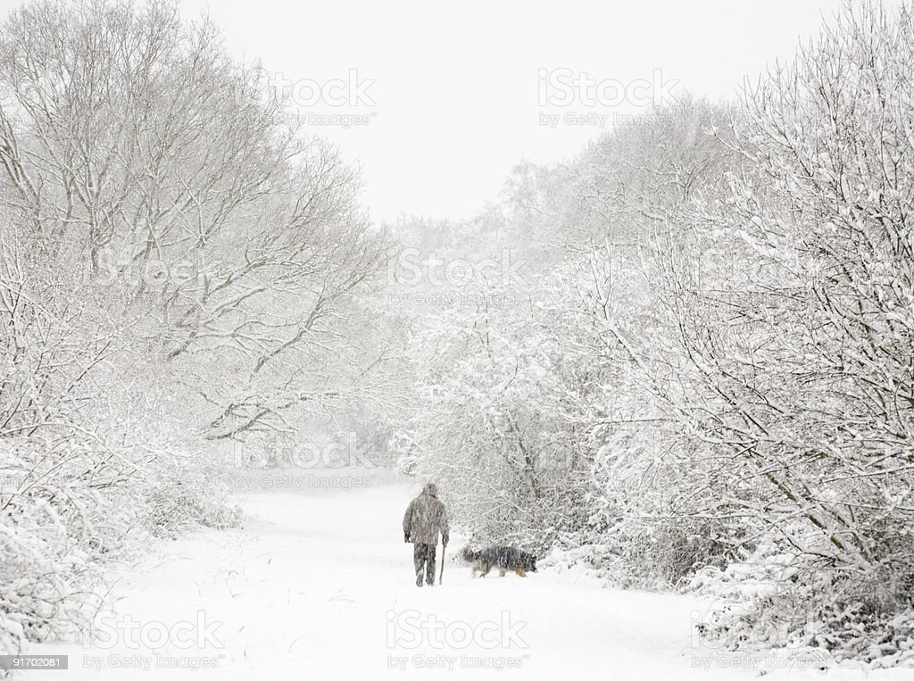 Man and dog in snow royalty-free stock photo