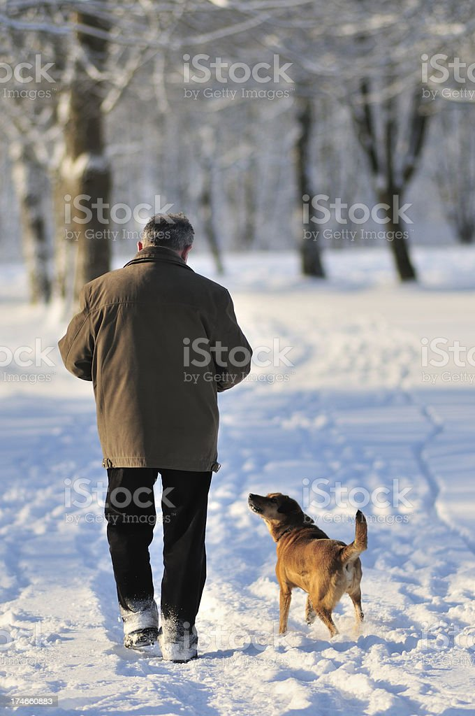 Man and dog in winter park stock photo