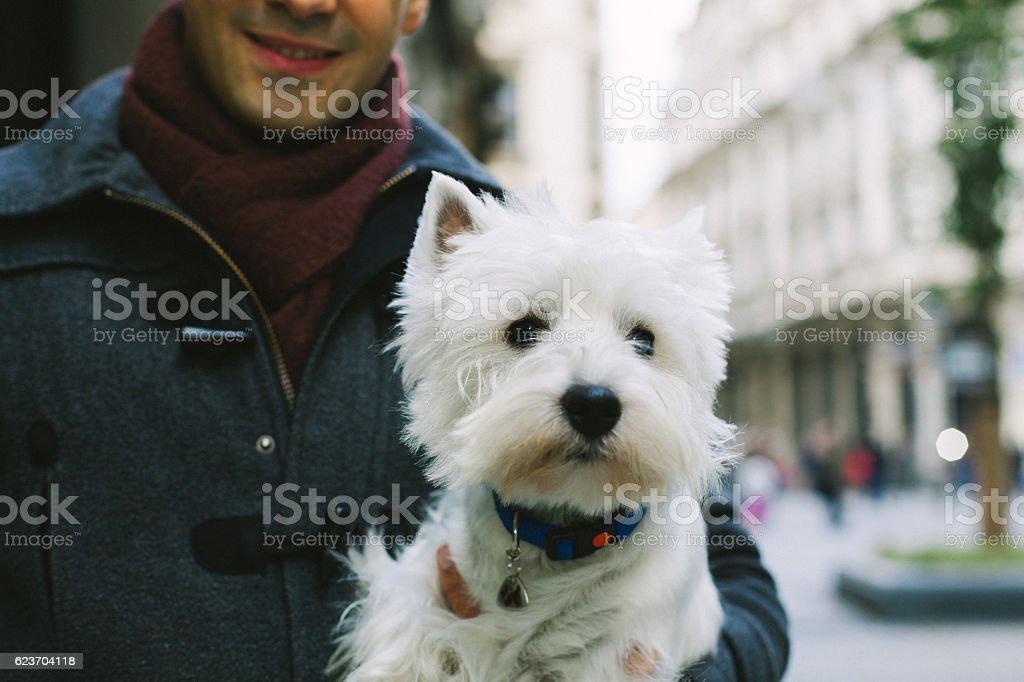 Man and dog stock photo