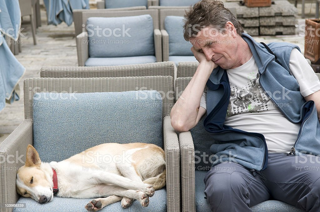 man and dog resting on blue and grey armchairs royalty-free stock photo