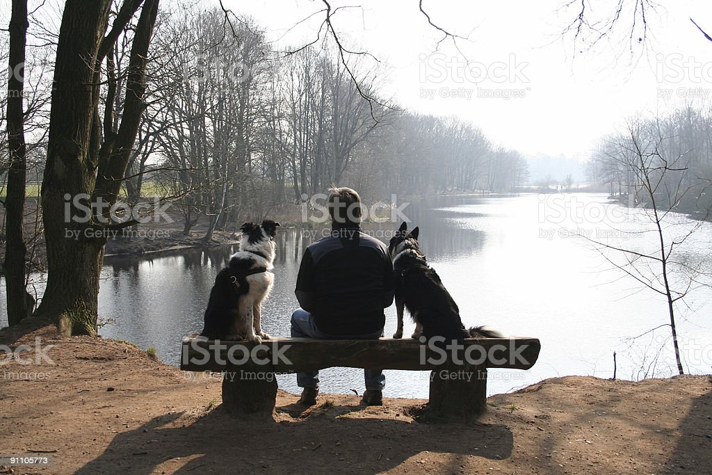 Man and dogs in winter. royalty-free stock photo