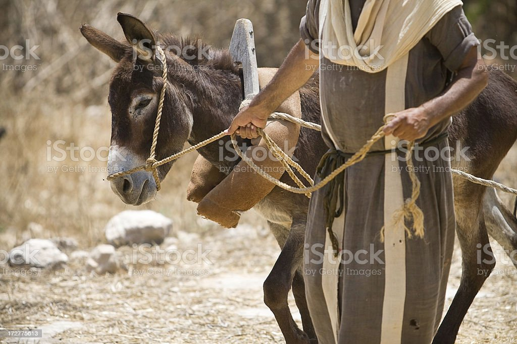Man and Donkey on a Famous Biblical Journey stock photo