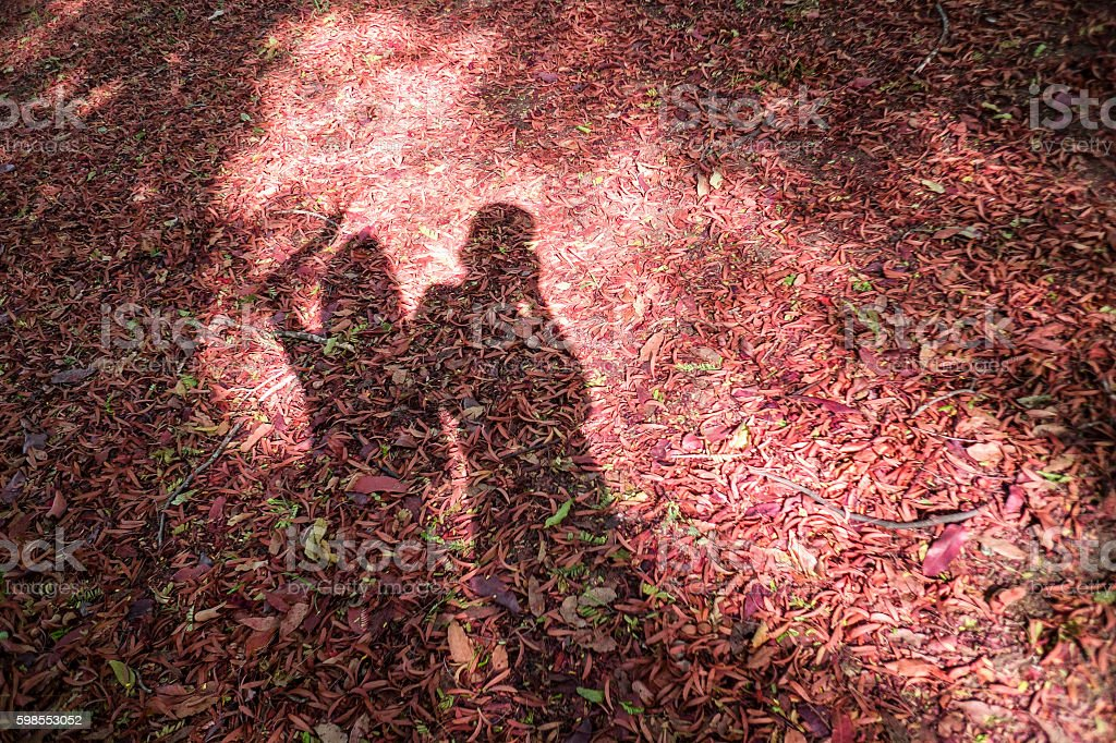 man and girl shadow on a dry leave,love concept stock photo