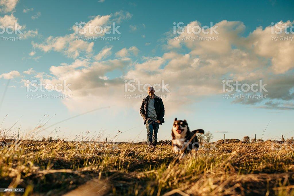 Man and his chihuahua at sunset stock photo