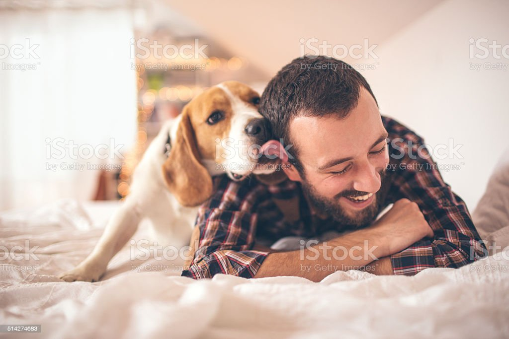 Man and his dog stock photo