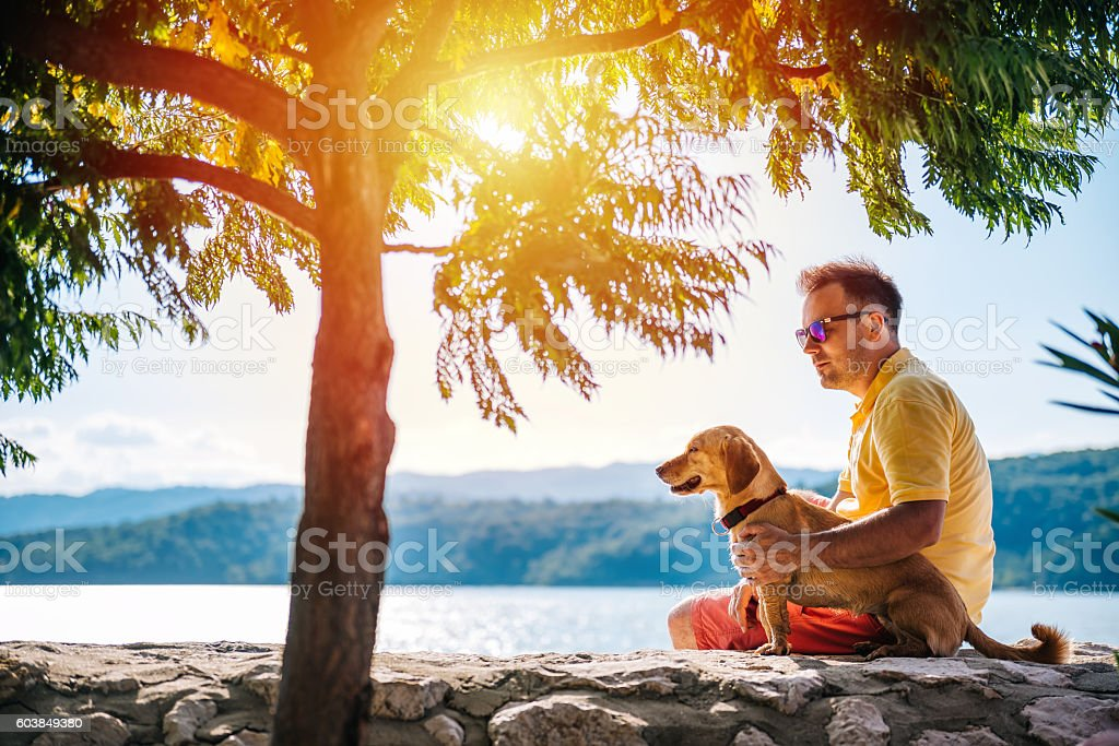 Man and his dog sitting on a stone wall stock photo