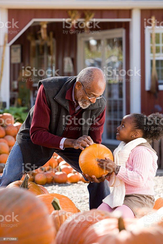 A man and his granddaughter choosing pumpkins royalty-free stock photo