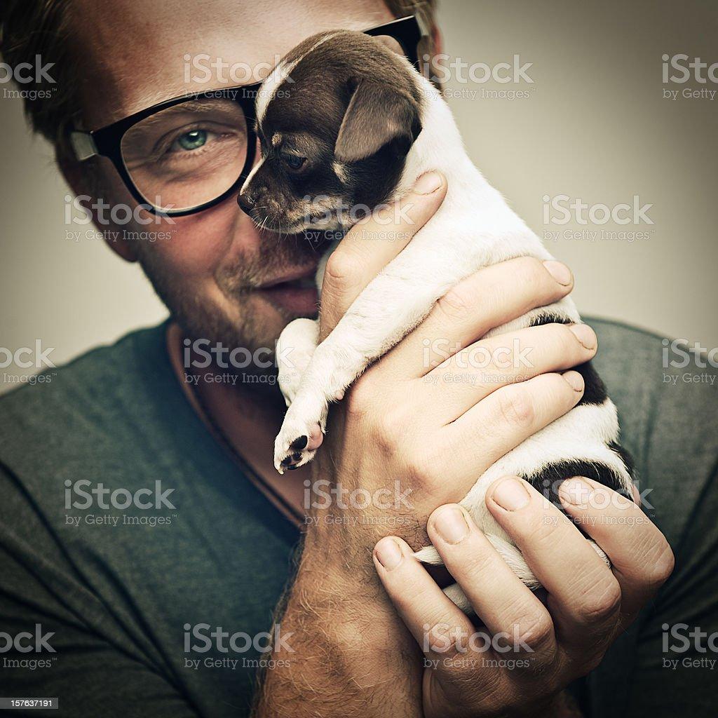 man and tiny chihuahua puppy stock photo