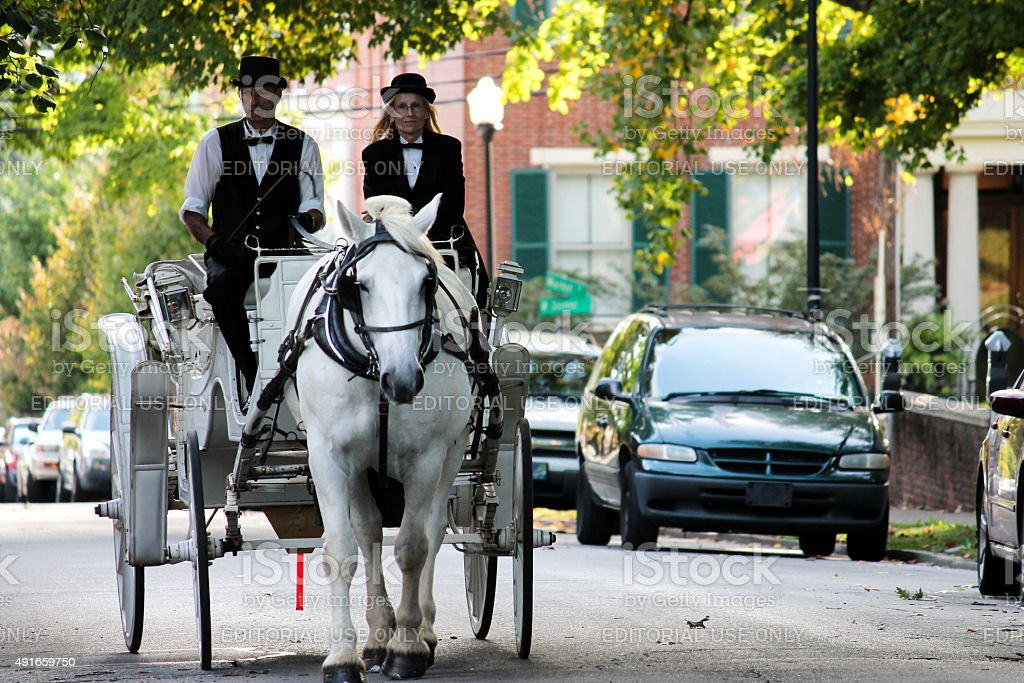 Man and Woman Guide a Horse and Buggy stock photo