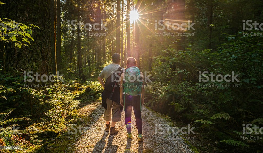 Man and Woman Hikers in Forest Admiring Sunlight Through Trees stock photo