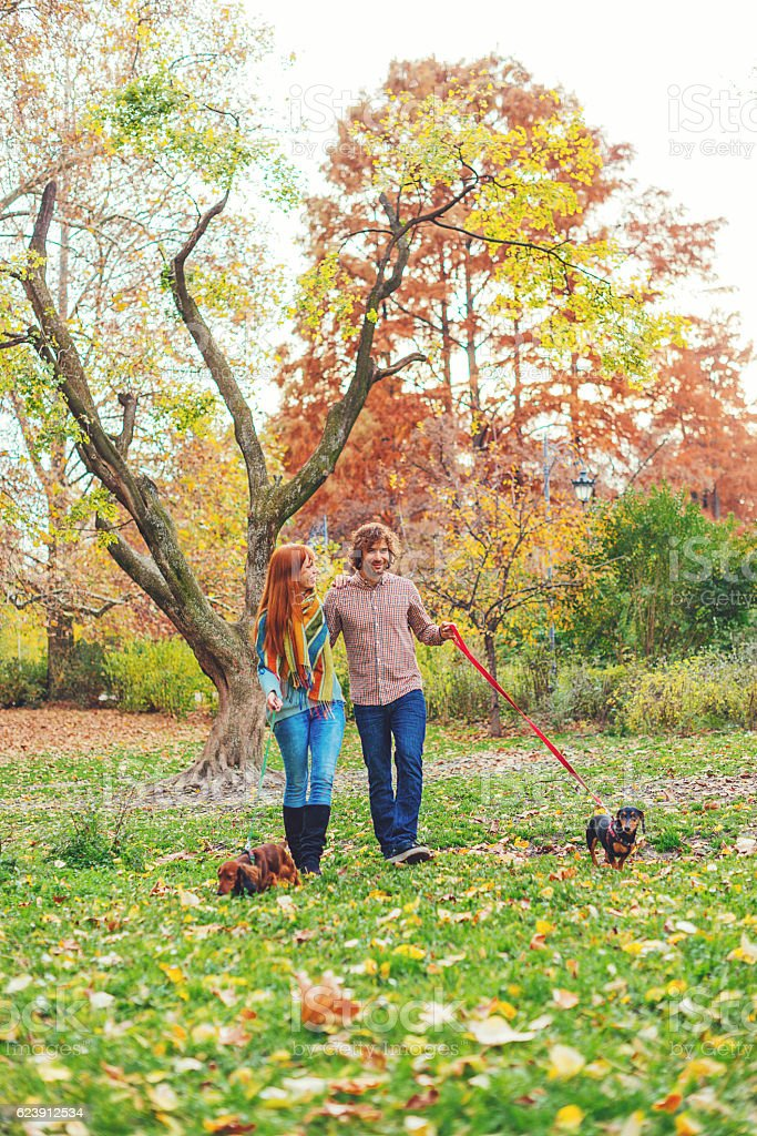 Man and woman running dogs in park on autumn day stock photo