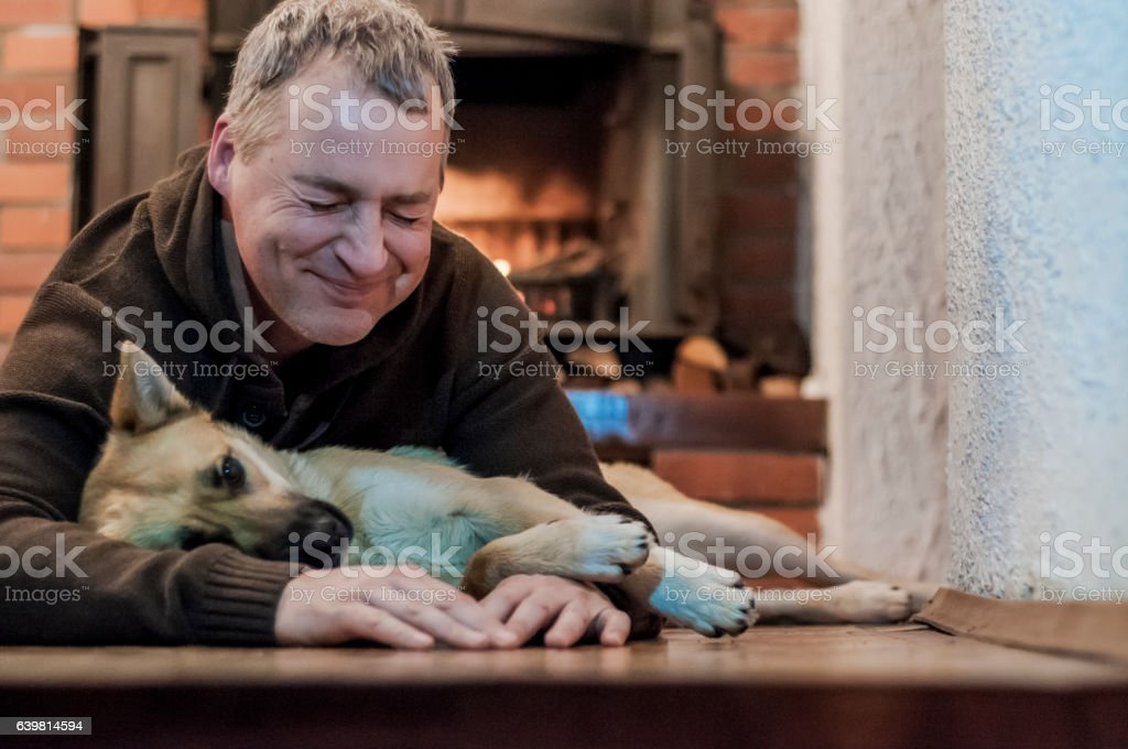 Man at home playing with a big dog. positively laugh. stock photo