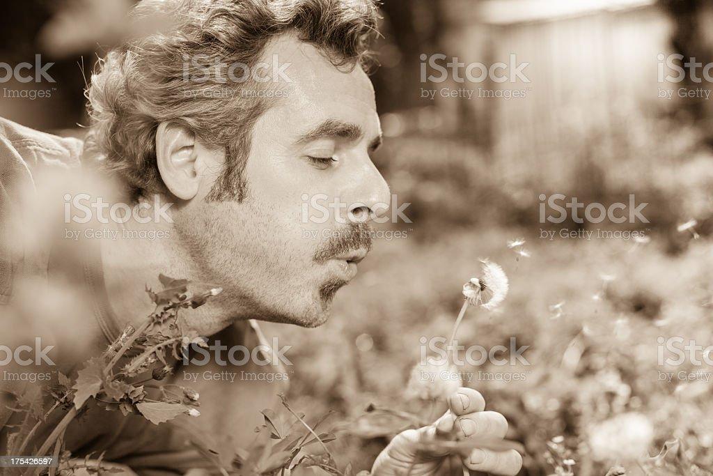 Man Blow Dandelion stock photo