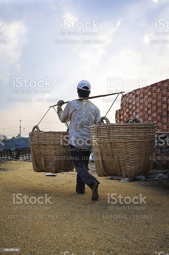 Man carrying a basket of rice husk, brick kiln factory royalty-free stock photo