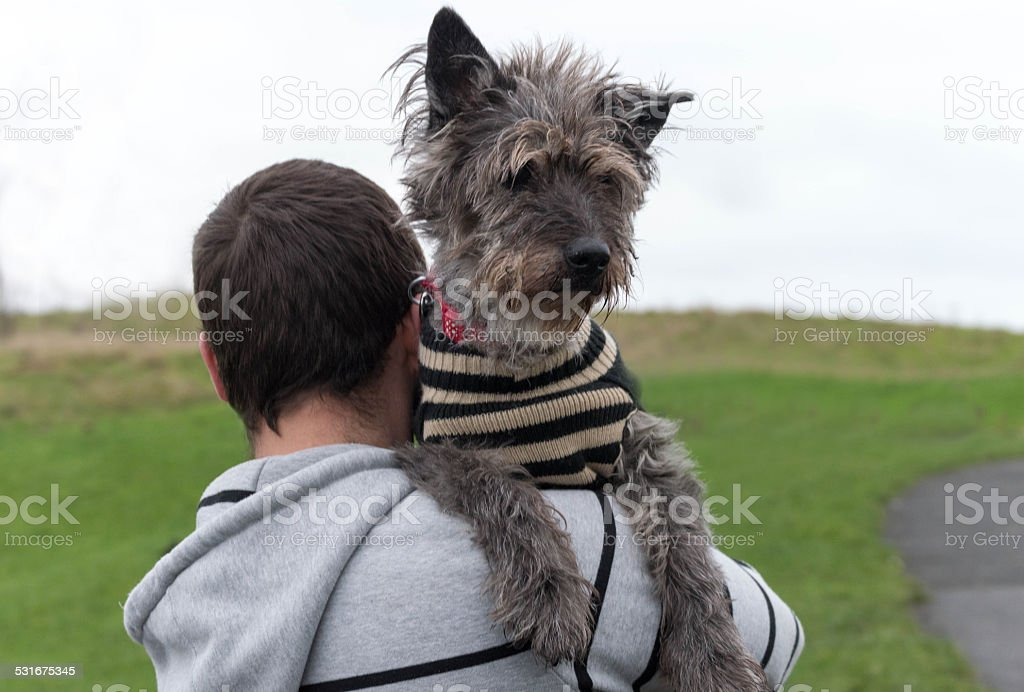 Man carrying old dog on shoulder stock photo