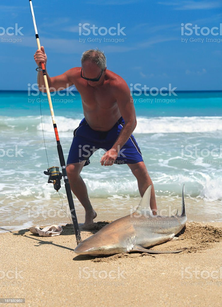 man catches black tip reef shark royalty-free stock photo