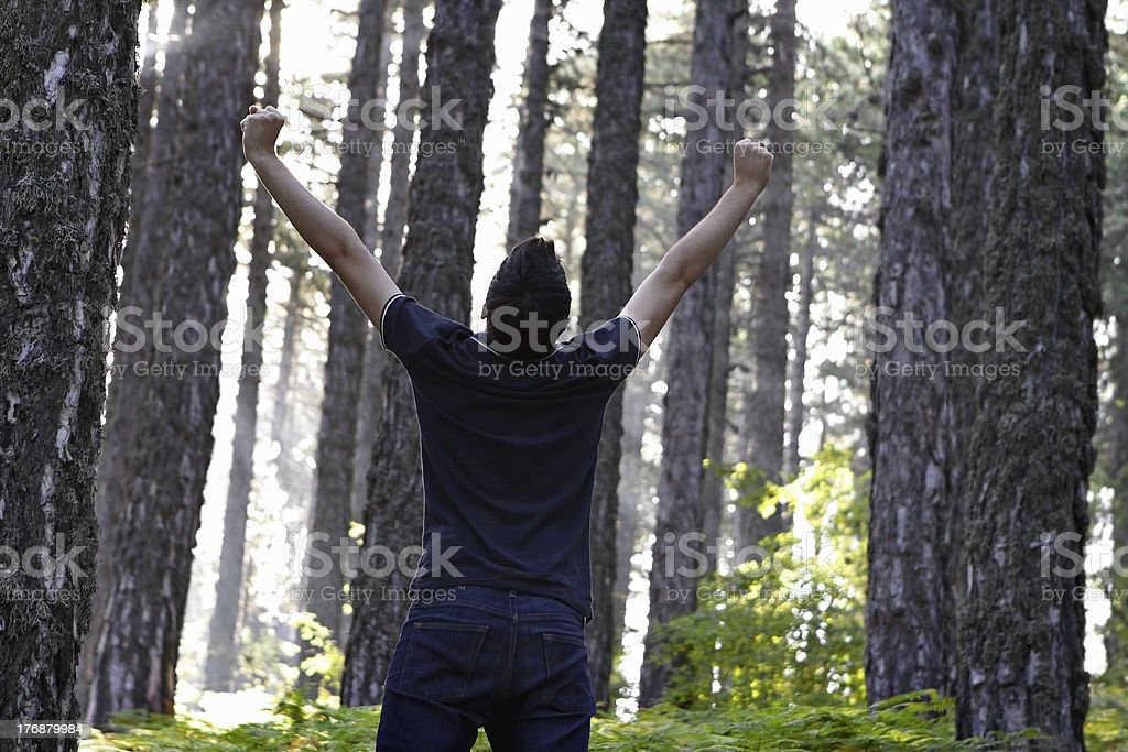Man celebrating with arms lifted in forest royalty-free stock photo