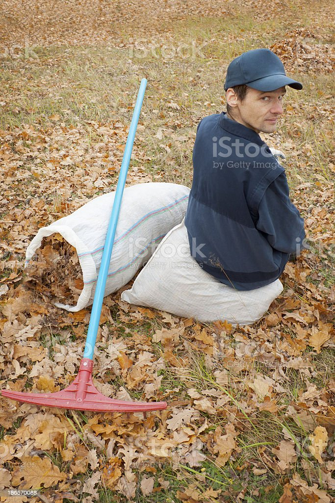 Man collects in a grove of leaves royalty-free stock photo