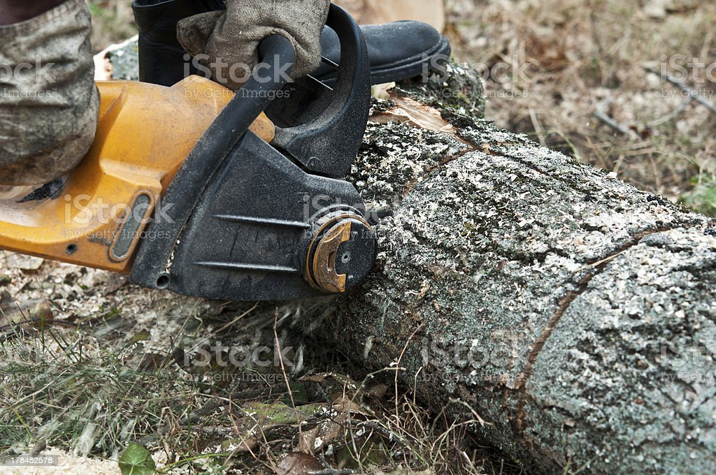 man cuts wood royalty-free stock photo