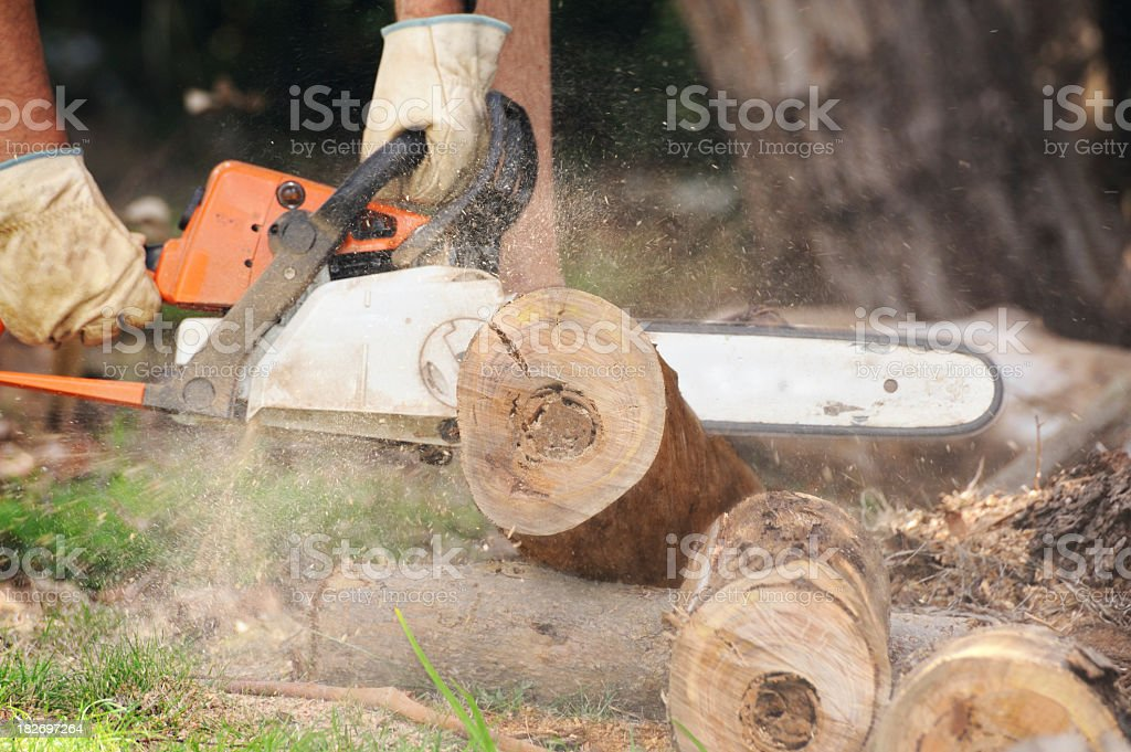 Man cutting a tree trunk with roaring chainsaw on the ground royalty-free stock photo
