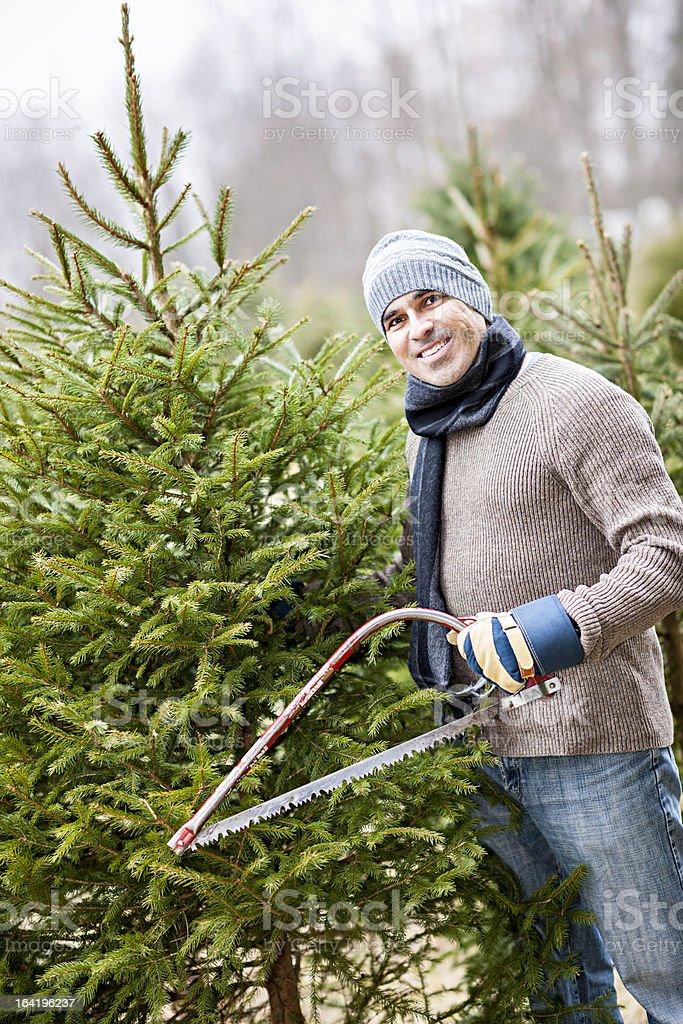 Man cutting Christmas tree stock photo