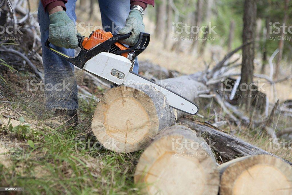Man Cutting Firewood royalty-free stock photo