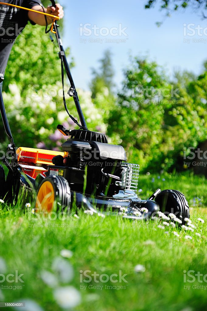 Man cutting grass / mowing the lawn royalty-free stock photo