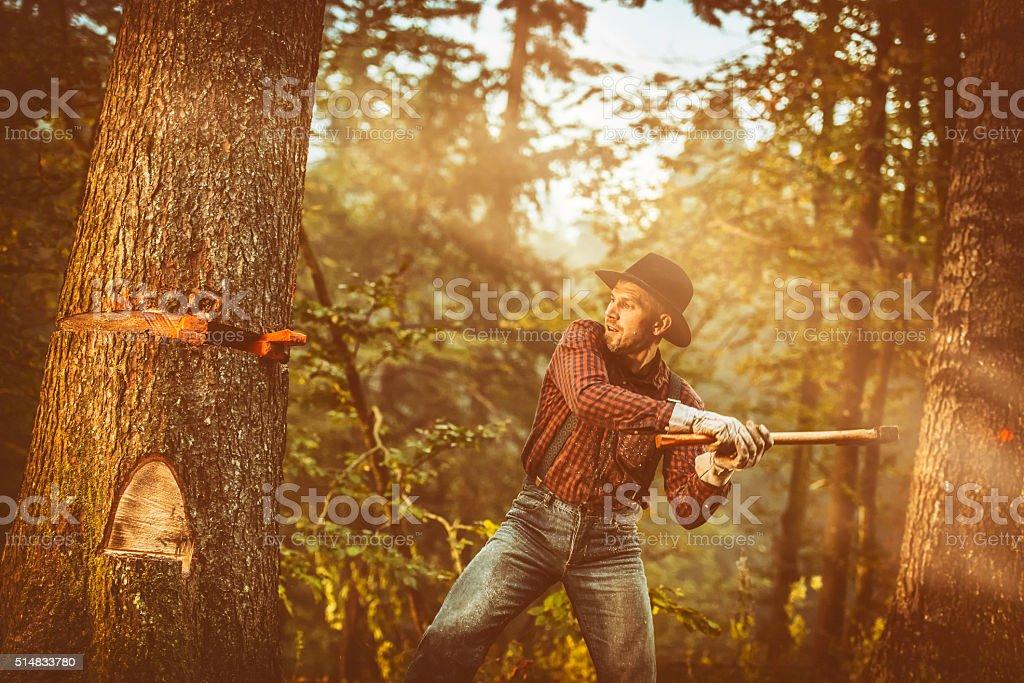 Man cutting tree stock photo