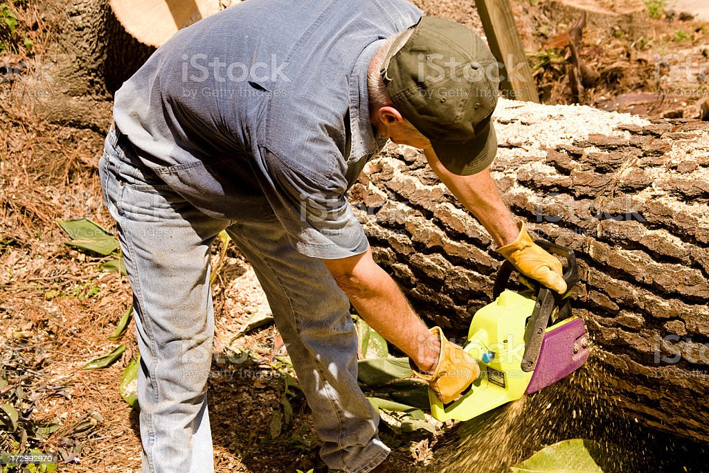 Man cutting tree with chainsaw. royalty-free stock photo