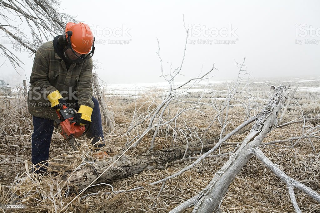 Man cutting wood with chainsaw royalty-free stock photo
