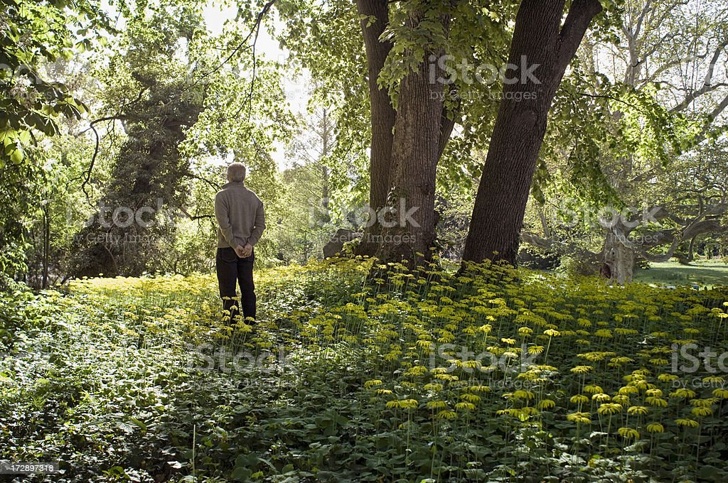Man daydreaming in the nature royalty-free stock photo