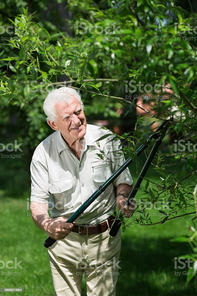 Man doing garden work stock photo