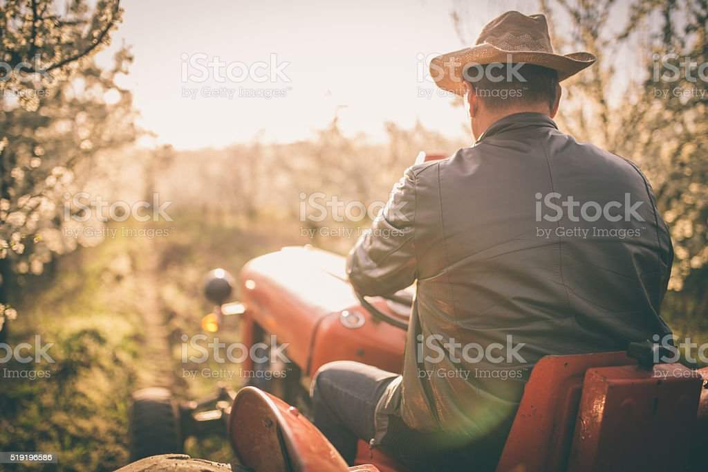 Man driving tractor stock photo