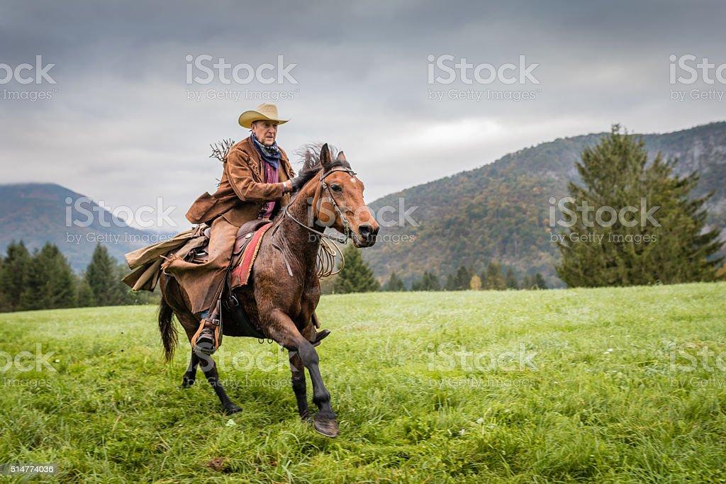 Man enjoying horse riding stock photo