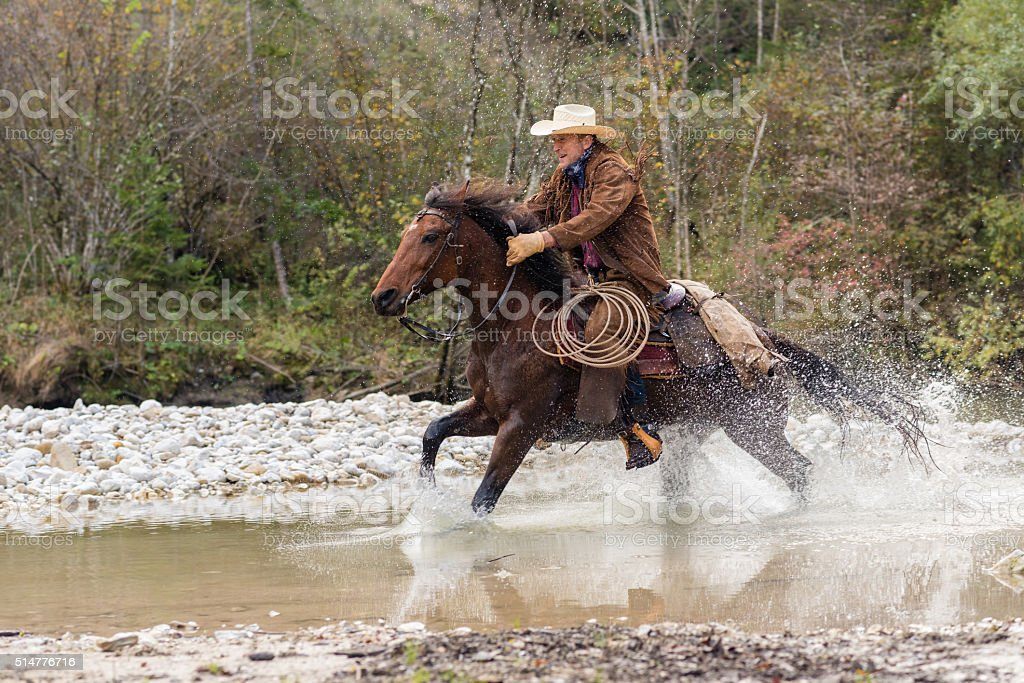 Man enjoying horse riding stock photo