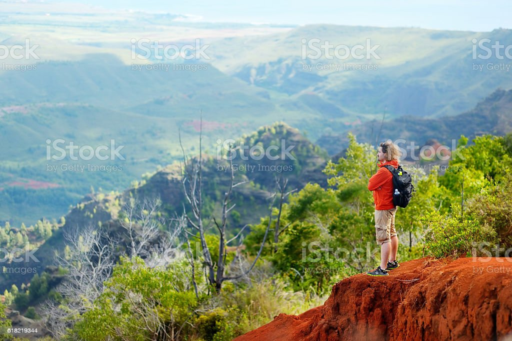 Man enjoying stunning view into Waimea Canyon stock photo