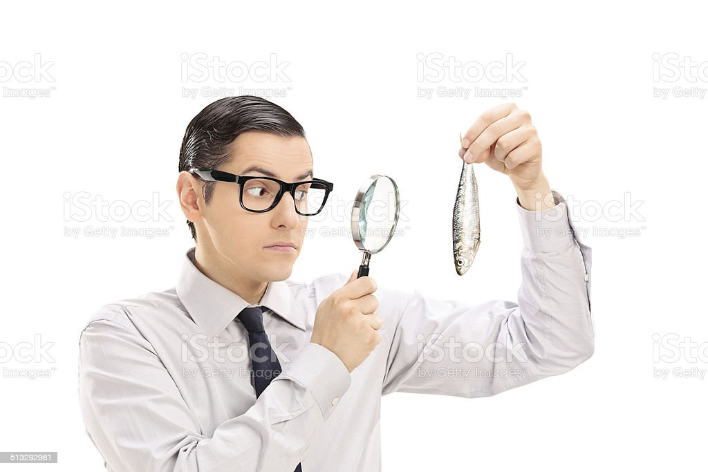 Man examining a fish through magnifying glass stock photo