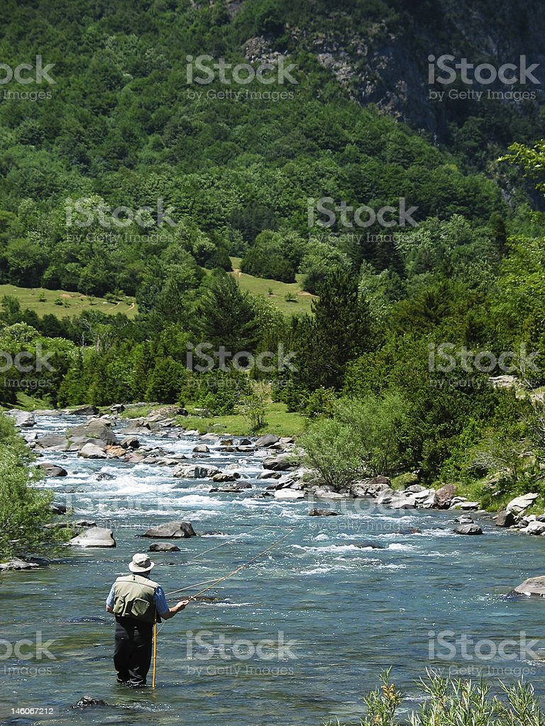 Man fishing alone in a stream by the forest royalty-free stock photo