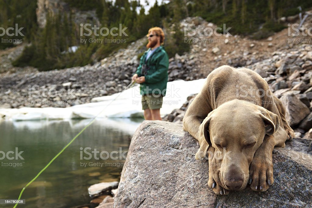 Man fishing while his dog sleeps stock photo