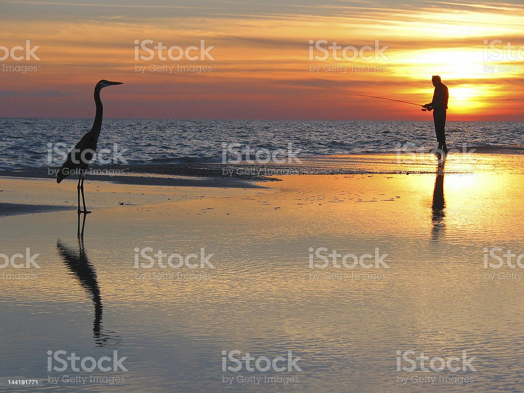 Man fishing with a bird in the foreground during sunset stock photo