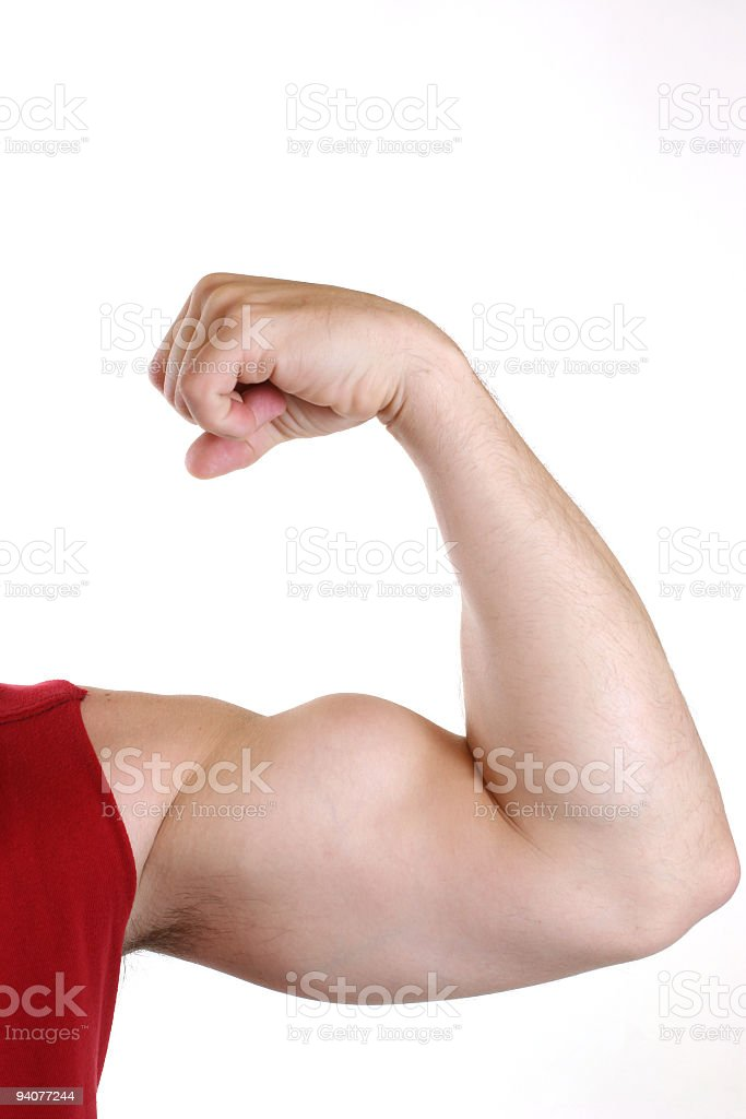 Man flexing big bicep arm muscle. White background. Athlete. Exercise. royalty-free stock photo