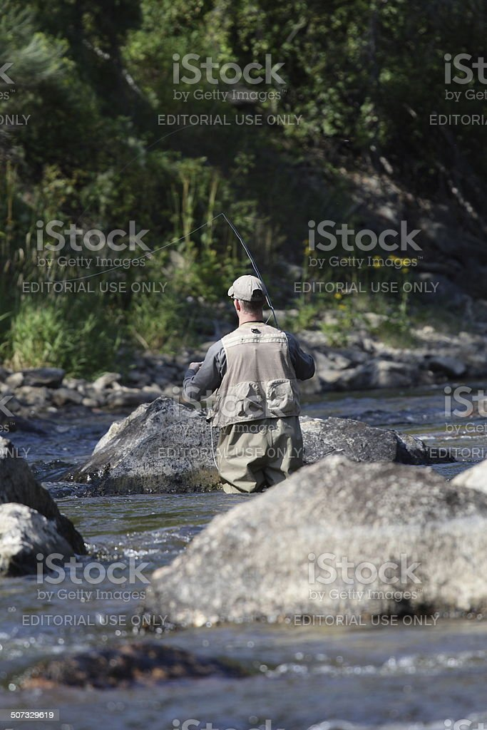 Man Fly Fishing for Trout on a River stock photo