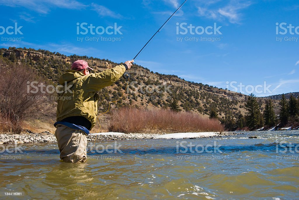 Man Fly Fishing in River royalty-free stock photo