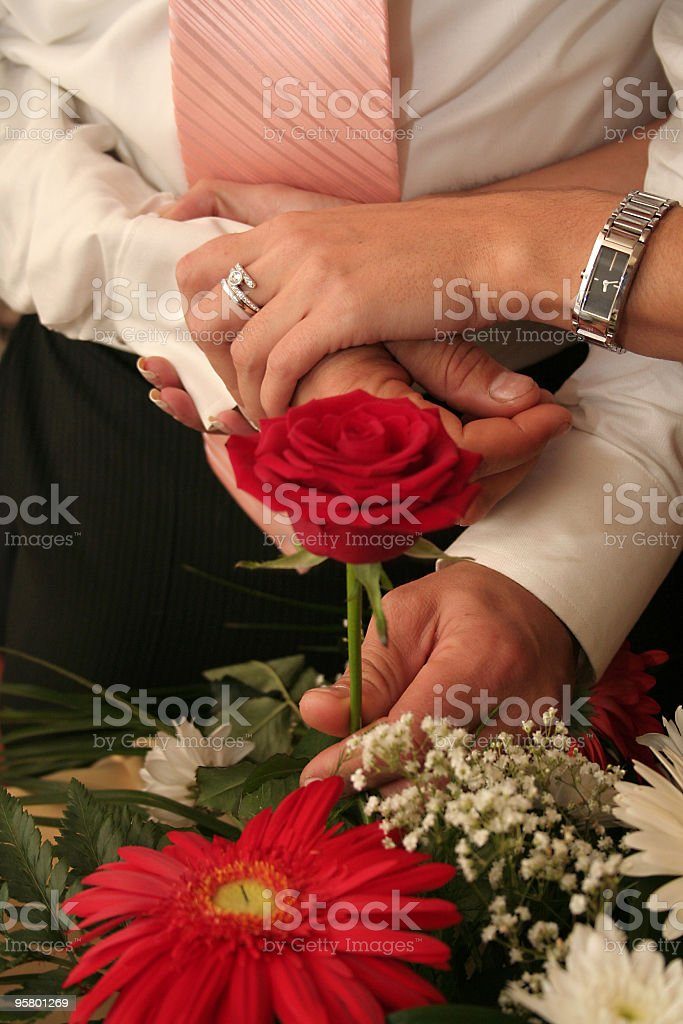 man gives rose to woman royalty-free stock photo
